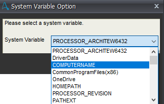 System variable option